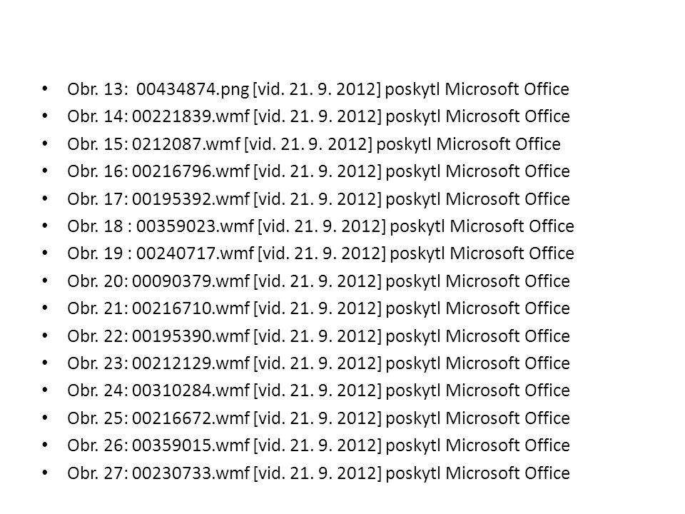 Obr. 13: 00434874.png [vid. 21. 9. 2012] poskytl Microsoft Office